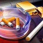 Sigara Markaları ve Nikotin Oranları (2017)