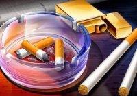 Sigara Markaları ve Nikotin Oranları (2017) 1