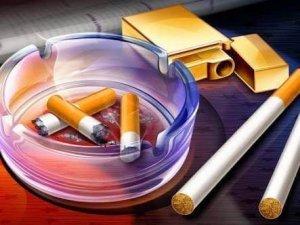 Sigara Markaları ve Nikotin Oranları (2018)