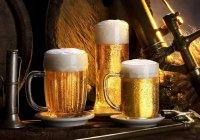 Bira Markaları ve Alkol Oranları (2017) 2